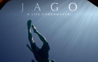 una vida bajo el mar